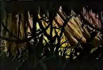 Archivo:DeadForest-ES02E05.jpg