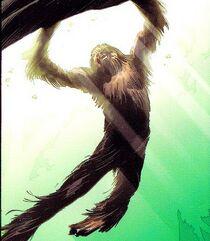 Chewbacca 004.jpg