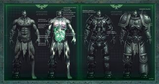Anatomia de un Astarte.jpg