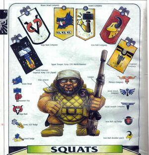 Insignias squat.jpg