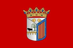 Flagofsalamanca