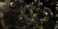 Task Force: Raptor