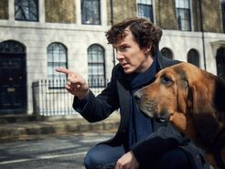 ES TV Guide Q1 2017 - Sherlock 1