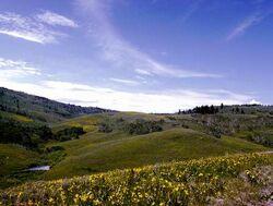Plains.