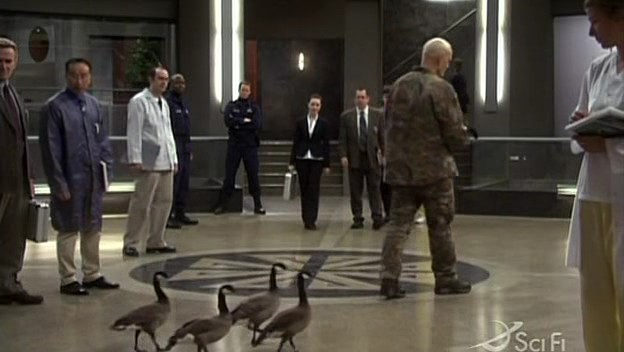 File:Duck, Duck Goose.jpg