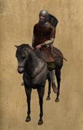 Castillian Horseman mounted