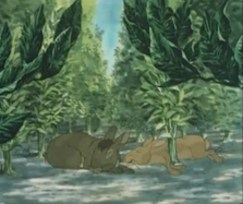 Bigwig and Dandelion sleeping