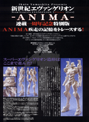 ANIMA Special Interview.png
