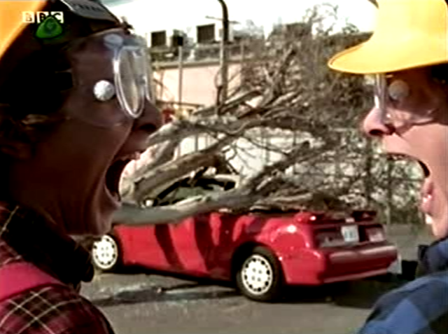 File:Tree falls on Car.png
