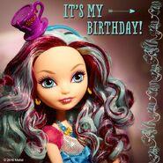 Facebook - Maddie Birthday