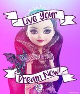 Facebook - Live Your Dreams