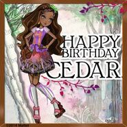 Facebook - Happy birthday Cedar