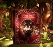 Facebook - Cerise Wolf box reveal