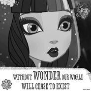 Facebook - a wonderless world