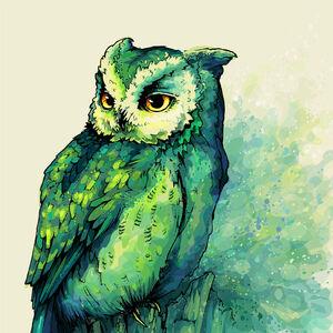 Tumblr static owl