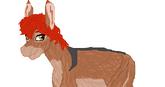 Lana donkey