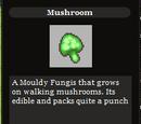 Mushroom (Item)