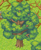 File:Normal Tree 1.png
