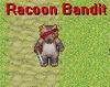 Racoon Bandit