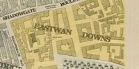 Eastwan Downs