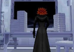 The Organization XIII's Library