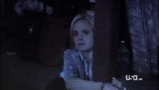 Allison Captive