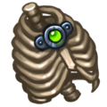 Ds item frank thorax.png