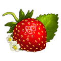 Ds item strawberry.png