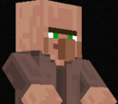 Villager (Character)