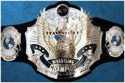 ACWWorldHeavyweightChampionship-His
