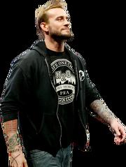25 CM Punk