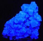 Fluorescent Benite