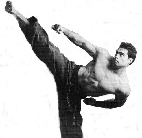 File:Daniel Arrias karate d.jpg
