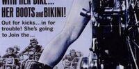 Outlaw Biker Film