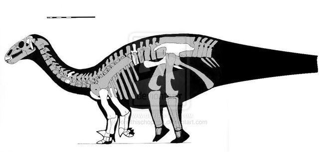 File:Lurdusaurus - 1(Skeletal).jpg