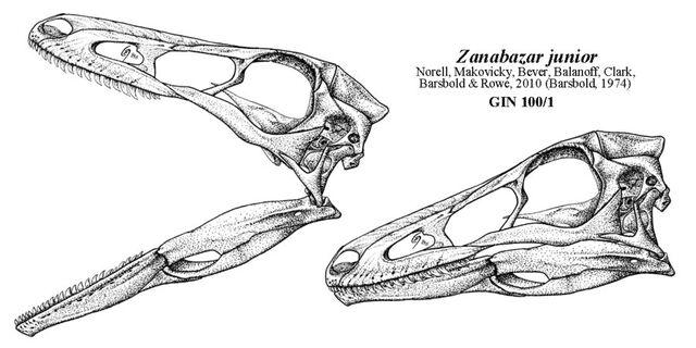 File:Zanabazar - 1(Skull sketch).jpg