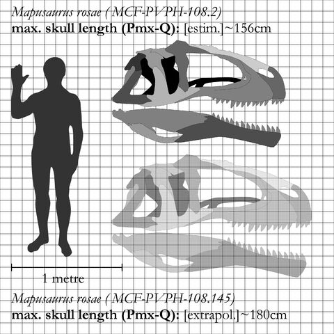 File:Mapusaurus - 2(Comparison).jpg