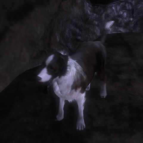 File:Fable3.dog.morph.good.jpg
