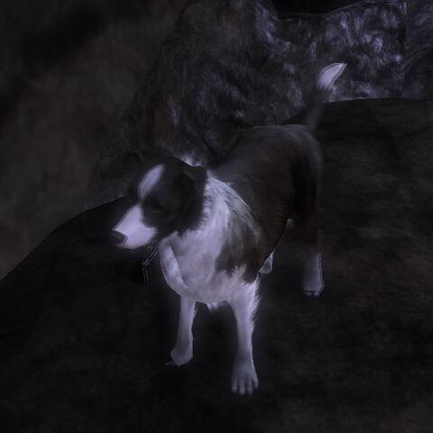 File:Fable3.dog.morph.good.jpg