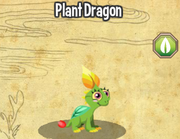Plant dragon lv1-3