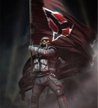 C-AE flag