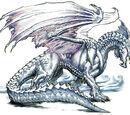 Weiße Drachen