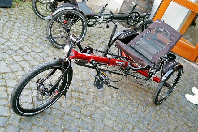Datei:Hase Kettwiesel 2.jpg