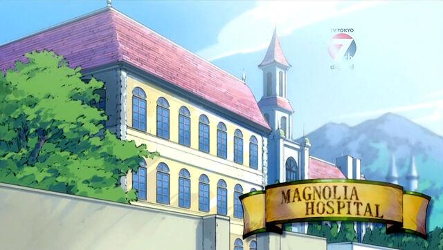 File:Magnolia Hospital.jpg
