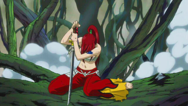 File:Erza recovers.jpg