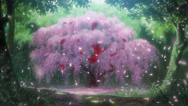 File:Sakura01.jpg