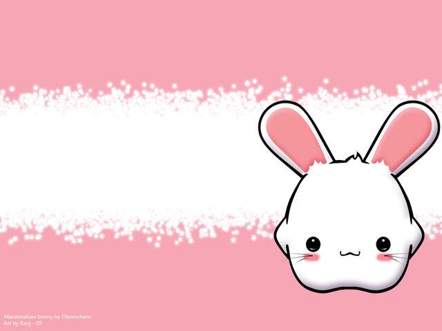 File:Cute marshmallow.jpeg