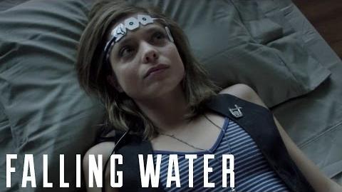 Falling Water The Science of Dreams Moran Cerf, PhD