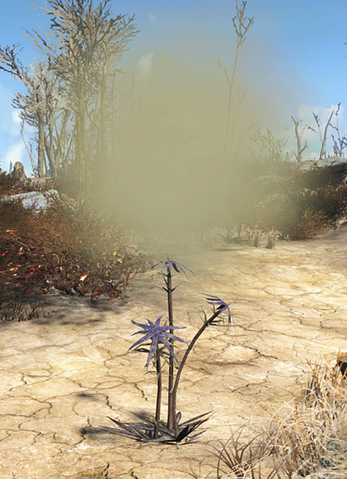 File:FO4 Thistle plant (exploding).png