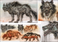 Fo3 Wastewolf concept art.png